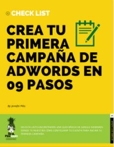 Guia_primera_campaña_google-adwords-srapineapple
